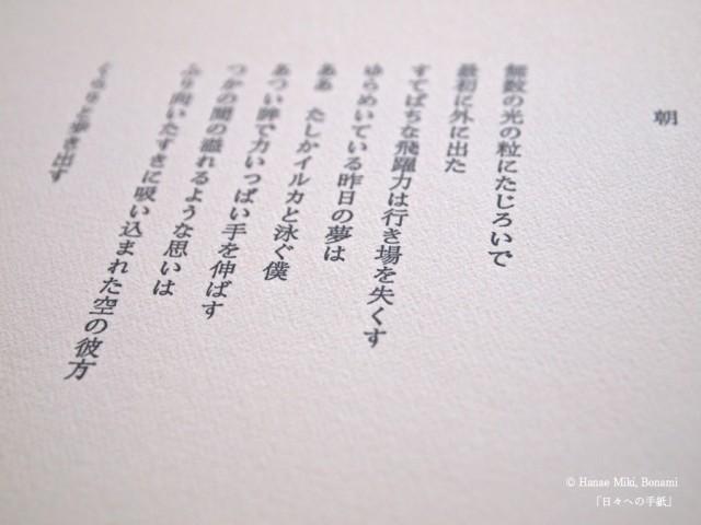 P6233747のコピー