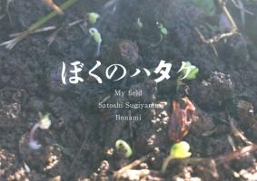 ぼくの畑 - My field アートワーク